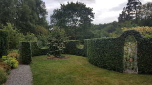 Hedge shaped topiary style