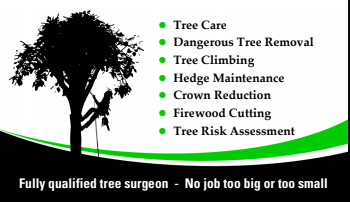 Lucas Tree Services business card